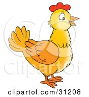 Clipart Illustration Of A Yellow Farm Chicken In Profile
