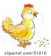 Clipart Illustration Of A Yellow Hen Standing Over Bird Seed