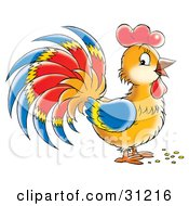 Clipart Illustration Of A Brown Rooster With Blue Red And Yellow Plumage On Its Wings by Alex Bannykh