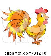 Clipart Illustration Of A Rooster With Orange And Yellow Feathers Standing In Profile by Alex Bannykh