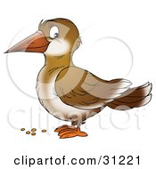 Clipart Illustration Of A Cute Brown Crow In Profile Standing Over Bird Seed by Alex Bannykh