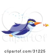 Clipart Illustration Of A Blue And White Penguin With Yellow Eyebrows Swimming Underwater With An Orange Fish