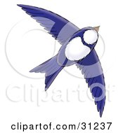 Clipart Illustration Of A Blue And White Bird Flying Through The Sky On A White Background by Alex Bannykh