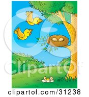 Clipart Illustration Of Two Yellow Birds Flying Towards Their Eggs In A Nest One Broken Egg On The Ground
