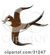 Clipart Illustration Of A Beautiful Brown Bird With A White Belly Flying Through The Sky On A White Background