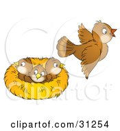 Clipart Illustration Of A Brown Bird Flying Away From A Nest With Three Baby Birds