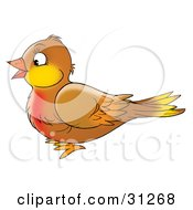 Clipart Illustration Of A Cute Brown Robin Bird With A Red Chest In Profile Facing Left On A White Background