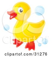 Cute Yellow Rubber Ducky Standing On A White Background With Blue Bubbles