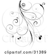 Clipart Illustration Of A Black Intricate Curly Vine With Leaves Over White