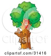Clipart Illustration Of A Cute Bear Cub Climbing A Tree To Visit A Friendly Squirrel