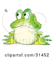 Clipart Illustration Of A Cute Warty Green Frog Watching A Fly Buzz Past by Alex Bannykh