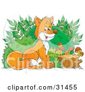 Clipart Illustration Of An Adorable Bushy Tailed Fox Sitting In Front Of Bushes By A Stump With Mushrooms by Alex Bannykh
