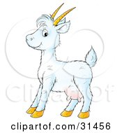 Clipart Illustration Of A Cute White Goat With Horns And Udders