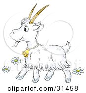 Clipart Illustration Of A Cute Long Haired Goat With Big Horns Wearing A Bell And Walking Past Flowers