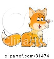 Clipart Illustration Of A Cute Little Fox Cub Sitting And Facing To The Right by Alex Bannykh
