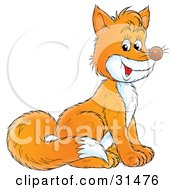 Clipart Illustration Of A Friendly Orange Fox With A Bushy Tail And White Belly Sitting by Alex Bannykh