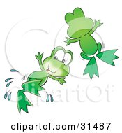 Two Cute Green Frogs Leaping Through The Air