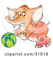 Clipart Illustration Of A Playful Baby Elephant With Tusks Chasing A Green Ball On A White Background by Alex Bannykh