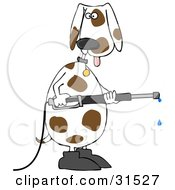 White And Brown Spotted Dog Wearing Boots Standing Up On His Hind Legs And Operating A Power Washer