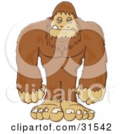 Clipart Illustration Of A Big Hairy Sasquatch Or Big Foot Standing And Facing Front by PlatyPlus Art