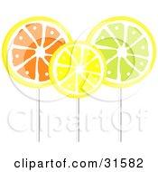 Three Orange Lemon And Lime Flavored Loli Pops On Sticks