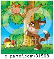 Clipart Illustration Of A Curious Brown Dog Standing Up Against A Tree Watching A Squirrel Gathering Acorns by Alex Bannykh