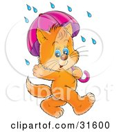 Clipart Illustration Of A Cute Blue Eyed Ginger Kitten Waving And Strolling With An Umbrella On A Rainy Day