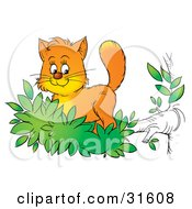 Clipart Illustration Of A Cute Ginger Kitten Exploring The Outdoors Standing In Leaves At The End Of A Tree Branch