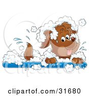 Playful Puppy Dog Splashing Around In A Bubble Bath