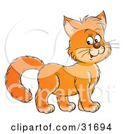 Clipart Illustration Of A Friendly Ginger Kitty Cat Smiling And Facing To The Right