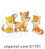Clipart Illustration Of Three Orange And Yellow Cats Sitting And Looking At The Viewer