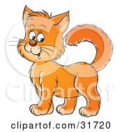 Clipart Illustration Of A Friendly Orange Kitty Cat Standing Proud And Smiling by Alex Bannykh