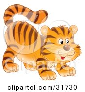 Clipart Illustration Of A Frisky Tiger Cub Swishing His Tail And Crouching Low On His Front Legs While Stalking Something by Alex Bannykh