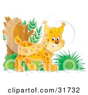 Clipart Illustration Of An Energetic Bobtail Kitten Exploring In The Woods