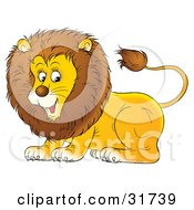 Clipart Illustration Of A Playful Young Male Lion With A Furry Mane