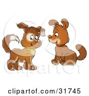 Clipart Illustration Of Two Cute Brown Puppy Dogs With Collars One Looking At The Viewer