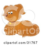 Clipart Illustration Of A Pleased Brown Puppy Dog Laying Down With Its Front Paws Crossed