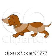 Clipart Illustration Of A Dachshund Dog In Profile Walking To The Left