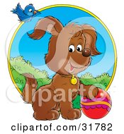 Clipart Illustration Of A Blue Bird Flying Above A Playful Puppy With A Ball