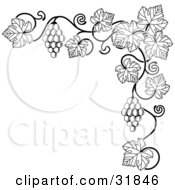 Clipart Illustration Of A Black And White Grape Vine With Bunches Of Grapes And Leaves Curling Along A Top Right Corner Edge by AtStockIllustration