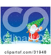 Clipart Illustration Of Kris Kringle Waving And Carrying A Freshly Cut Christmas Tree Over His Shoulder Through A Snowy Winter Landscape