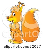 Clipart Illustration Of An Orange Squirrel Rubbing Its Belly Facing Left And Glancing At The Viewer by Alex Bannykh