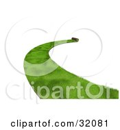 Clipart Illustration Of A Path Of Green 3d Sod Being Rolled Out With A Curve On A White Background