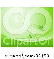 Clipart Illustration Of A Green Vine With Leaves Growing Along Waves Of Green On A Background With Faint Ripples by KJ Pargeter