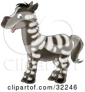 Cute Zebra With White Stripes On A Brown Base Coat