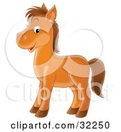 Happy Brown Pony Facing To The Left And Glancing At The Viewer