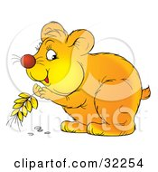 Clipart Illustration Of A Cute Hamster Storing Grains Of Wheat In His Cheeks by Alex Bannykh