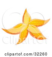 Clipart Illustration Of A Yellow And Orange Starfish