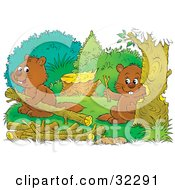 Two Beavers Building A Dam One Chewing Down A Tree One Carrying Logs