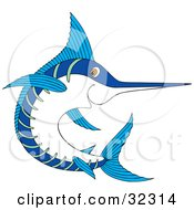 Clipart Illustration Of A Blue And White Swordfish Swimming